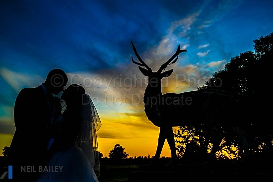 Hayley & Christopher at Gosfield Hall